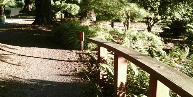 Aboretum 3 bridge side
