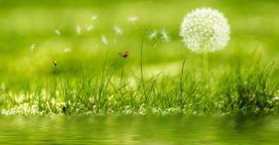background image beautiful blur bright