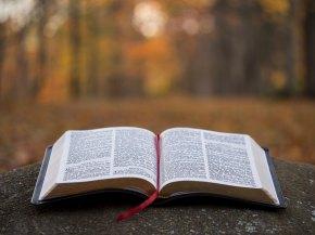bible aaron-burden-426280-unsplash